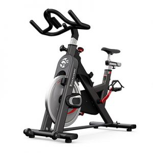 Bicicleta de spinning Life Fitness IC2